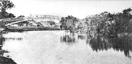 The Botanical Gardens Bridge at Anderson Street in about 1860