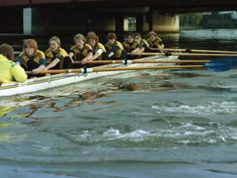 1984 Montreal FISA Lightweight World Championships - Gallery 1